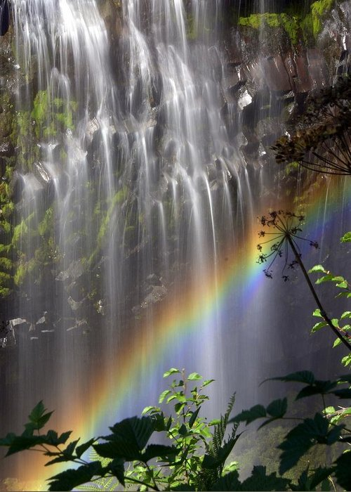 Waterfall Greeting Card featuring the photograph Rainbow Falls by Marty Koch