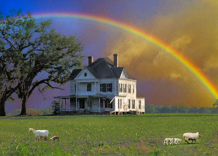 Landscapes Greeting Card featuring the photograph Rainbow Meadow by Jan Amiss Photography