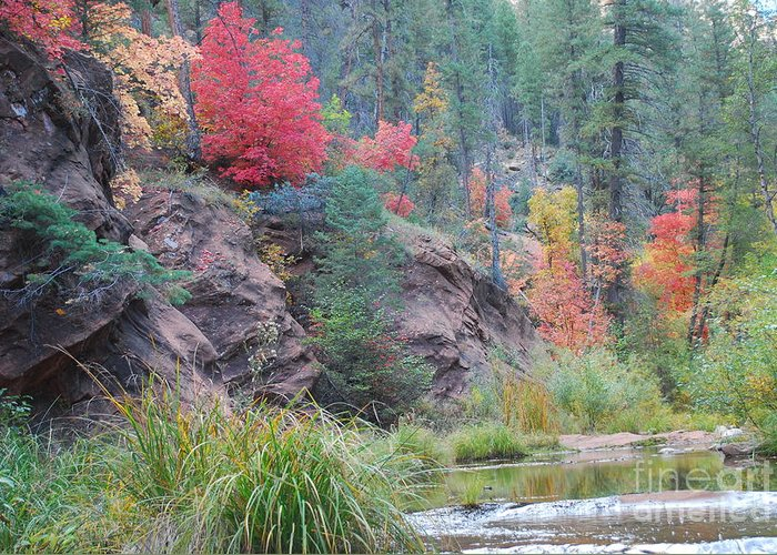 Sedona Greeting Card featuring the photograph Rainbow Of The Season With River by Heather Kirk