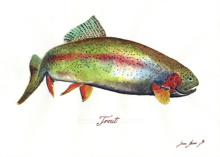 Trout Watercolor Greeting Cards