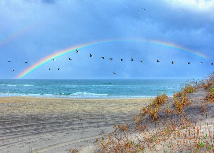 North Carolina Greeting Card featuring the photograph Rainbows And Wings I by Dan Carmichael