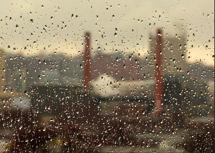 Rain Greeting Card featuring the photograph Raindrops by Lisa Kane