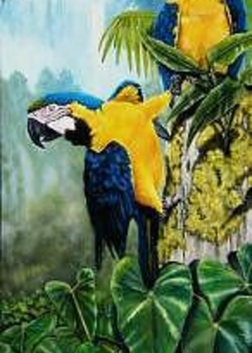 Tropical Greeting Card featuring the painting Rainforest Jewels by Syndi Michael
