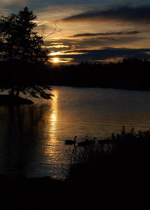 Landscape Greeting Card featuring the photograph Rangeley Maine by DeLa Hayes Coward