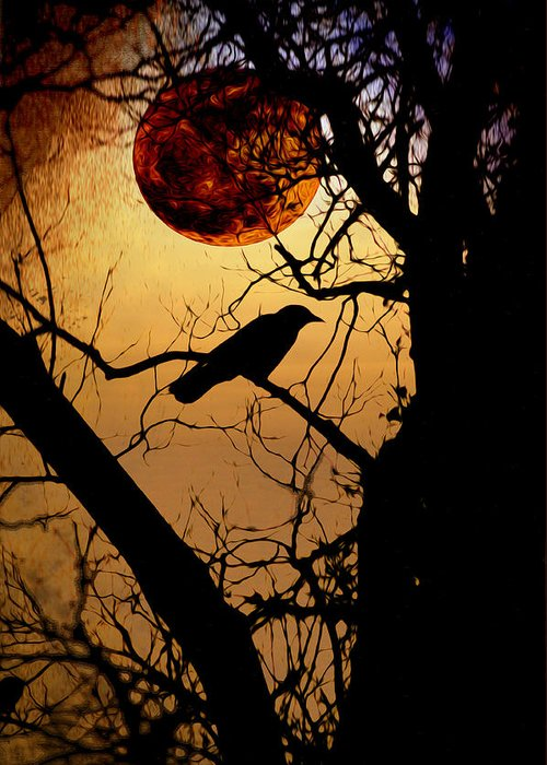 Raven Moon Greeting Card featuring the photograph Raven Moon by Bill Cannon