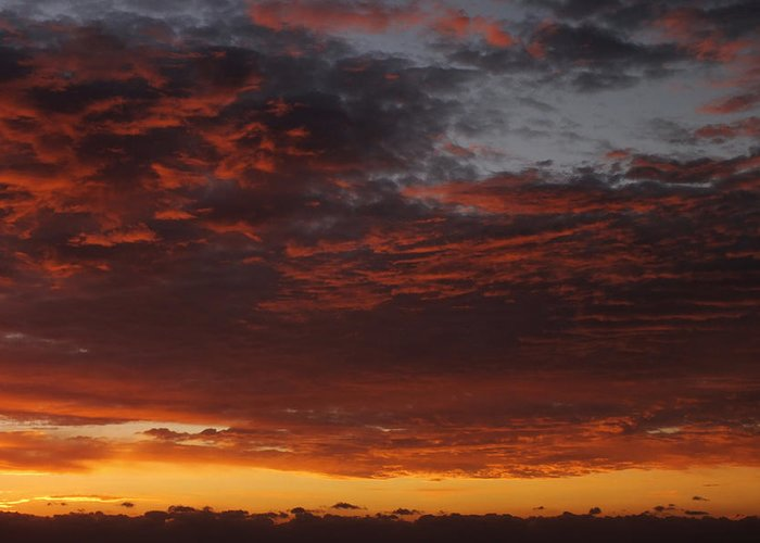 Sunset Greeting Card featuring the photograph Reach For The Sky 12 by Mike McGlothlen