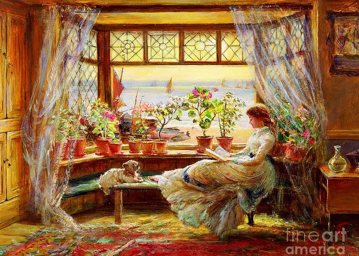 Reading By Window Greeting Cards