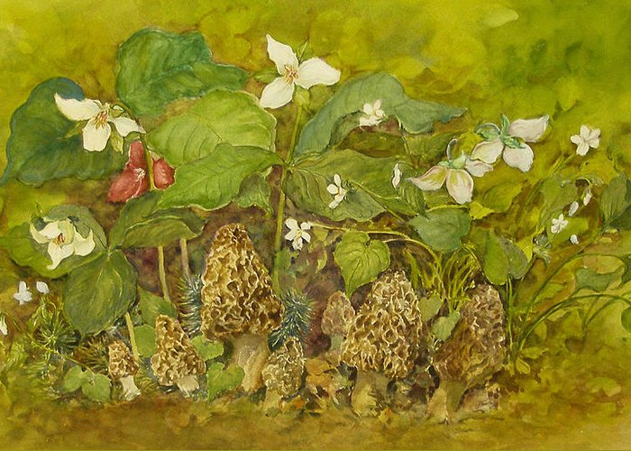 Mushrooms;trillium;spring;violets;woods;woodland;morels;watercolor Painting; Greeting Card featuring the painting Ready For Pickin' by Lois Mountz
