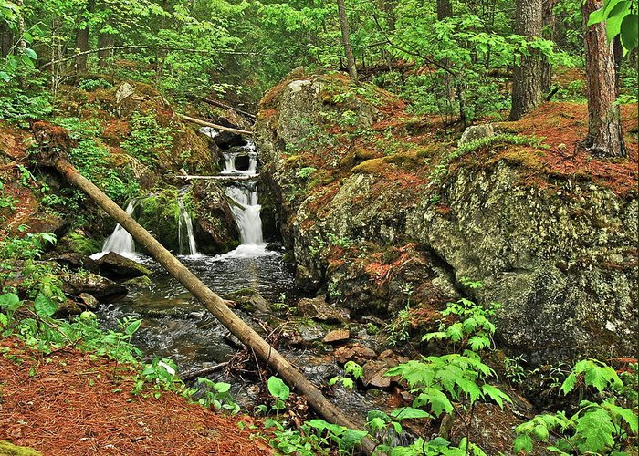 Reany Falls Greeting Card featuring the photograph Reany Falls 3 by Michael Peychich