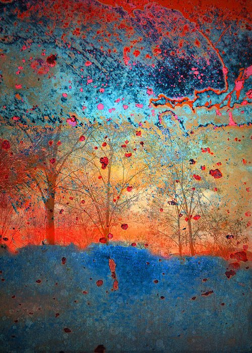 Trees Greeting Card featuring the photograph Rebirth by Tara Turner