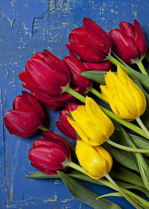 Red Yellow Tulips Greeting Card featuring the photograph Red And Yellow Tulips by Garry Gay
