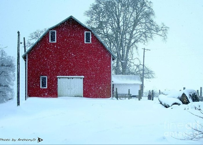 Red Barn Greeting Card featuring the photograph Red Barn In Snow by Anthony Djordjevic