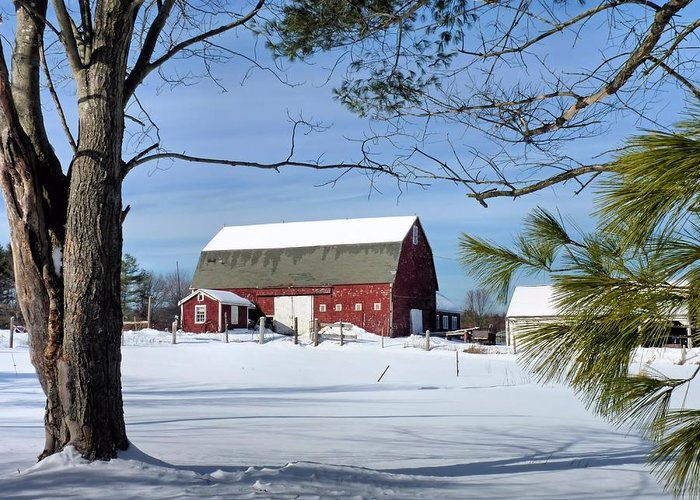 Red Barn Greeting Card featuring the photograph Red Barn In Winter by Janice Drew