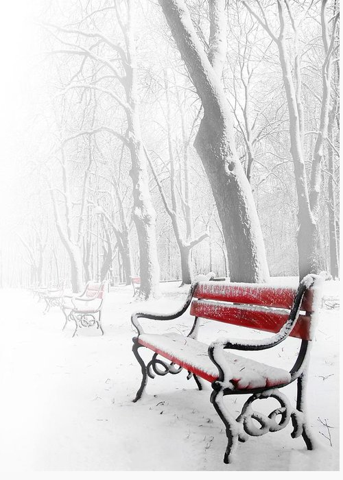Winter Scene Digital Art Greeting Cards
