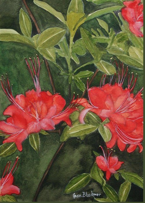 Flowers Greeting Card featuring the painting Red Blooms On The Parkway by Jean Blackmer