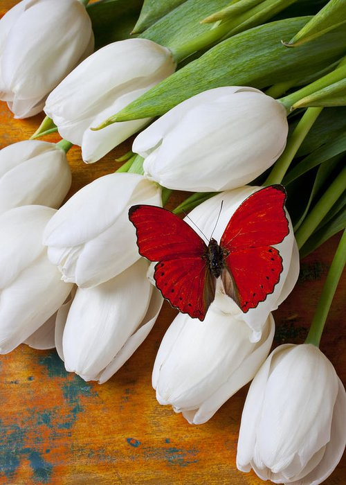 Red Butterfly White Tulips Tulip Greeting Card featuring the photograph Red Butterfly On White Tulips by Garry Gay