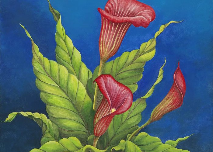 Red Calla Lillies On Blue Background Greeting Card featuring the painting Red Calla Lillies by Carol Sabo