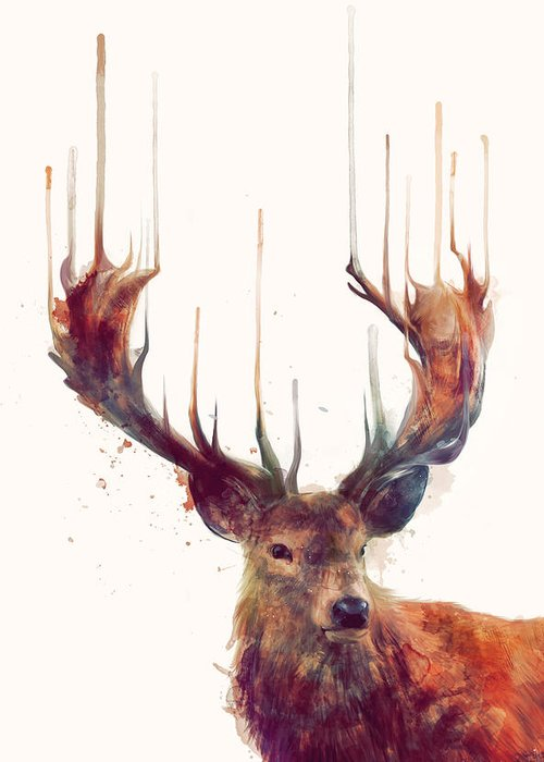 Buck Deer Greeting Cards