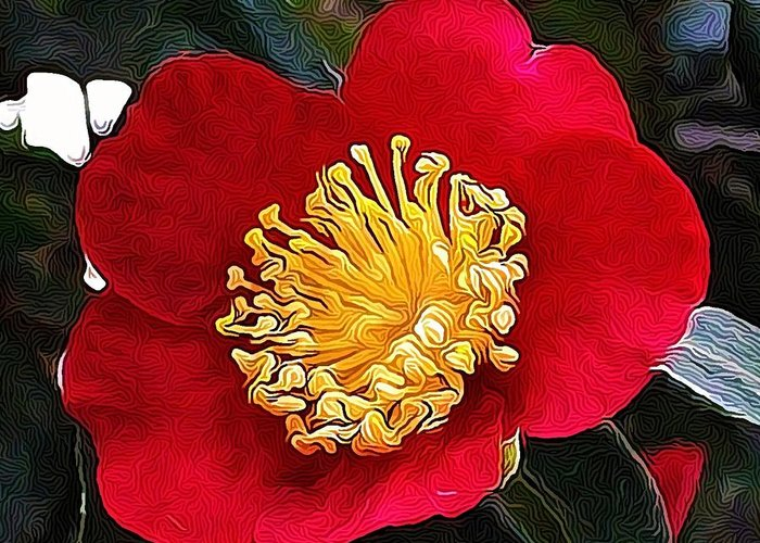 Flowers Greeting Card featuring the photograph Red Flower by Cathie Tyler