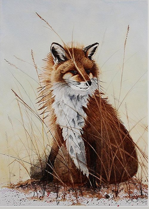 Wildlife Greeting Card featuring the painting Red Fox Waiting On Breakfast by Jimmy Smith