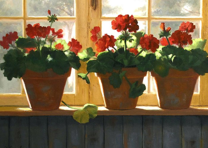 Geraniums Greeting Cards