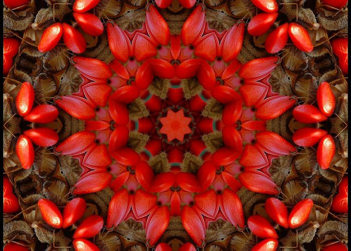 Kaleidoscope Greeting Card featuring the digital art Red Kaleidoscope No. 1 by Lyle Hatch