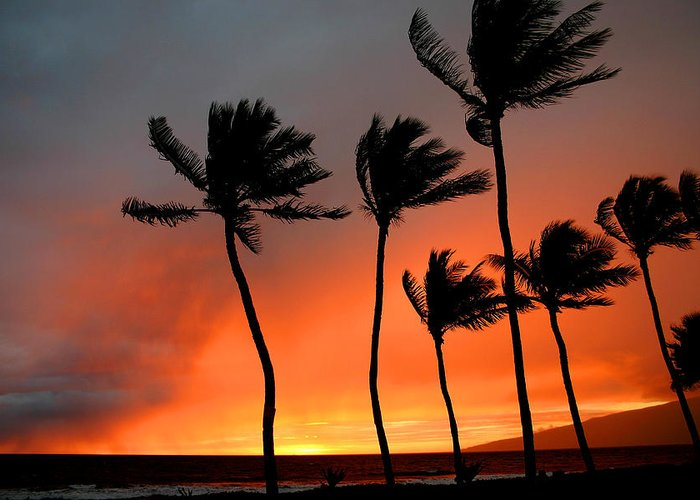 Maui Greeting Card featuring the photograph Red Maui Sunset Hawaii by Pierre Leclerc Photography