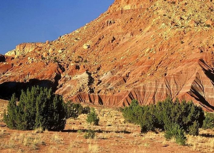 New Mexico Greeting Card featuring the photograph Red Rock New Mexico by AnnaJanessa PhotoArt