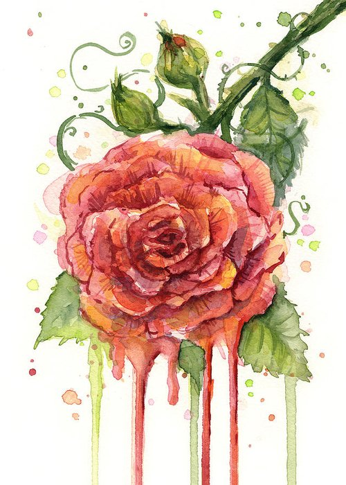 Rose Greeting Cards