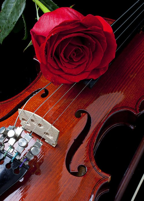 Violin Greeting Card featuring the photograph Red Rose With Violin by Garry Gay