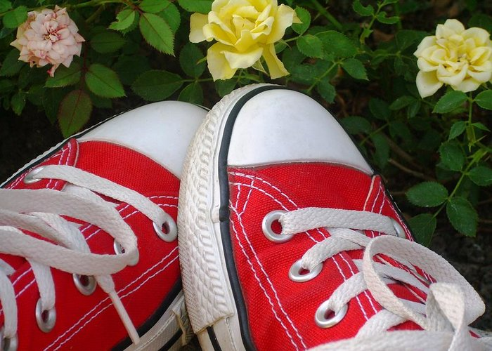 Sneaker Greeting Card featuring the photograph Red Sneakers by Torie Beck