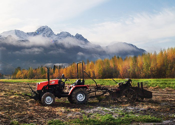 Photography Greeting Card featuring the photograph Red Tractor In Autumn by Dianne Roberson