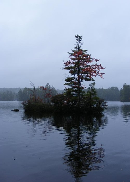 Tree Greeting Card featuring the photograph Red Tree Island by Alison Heckard
