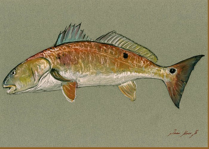 Fish Saltwater Greeting Cards