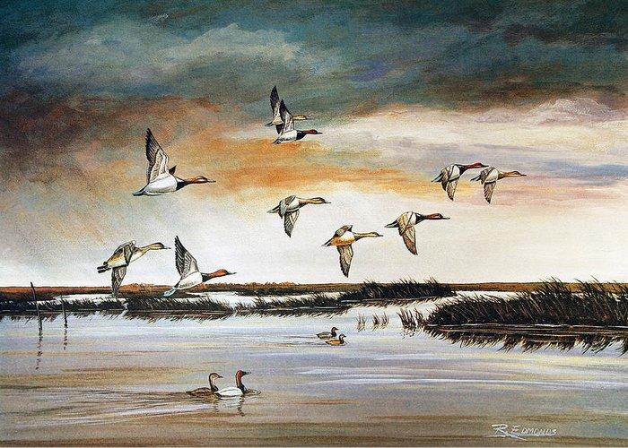 Wildlife Greeting Card featuring the painting Redheads In Flight by Raymond Edmonds