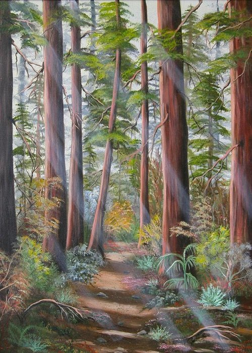 Landscape Greeting Card featuring the painting Redwood Path by Joni McPherson