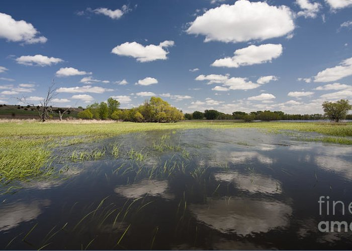 Clouds Greeting Card featuring the photograph Reflecting Clouds - Jim River Valley by Patrick Ziegler