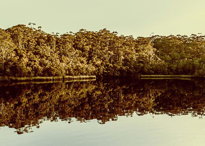 Reflection Greeting Card featuring the photograph Reflections From Cockle Creek by Jorgo Photography - Wall Art Gallery