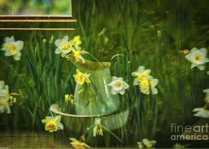 Reflection In Pitcher Photographs Greeting Cards