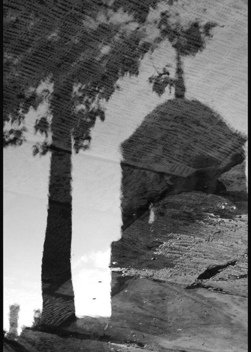 Black And White Greeting Card featuring the photograph Reflections by Julia Bridget Hayes
