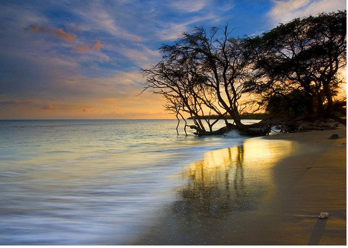 Waves Greeting Card featuring the photograph Reflections Of Paradise by Mike Dawson