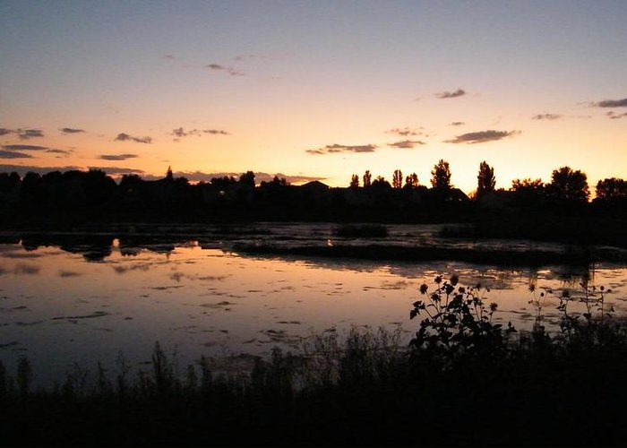 Sunset Greeting Card featuring the photograph Reflections by Stacy Frank