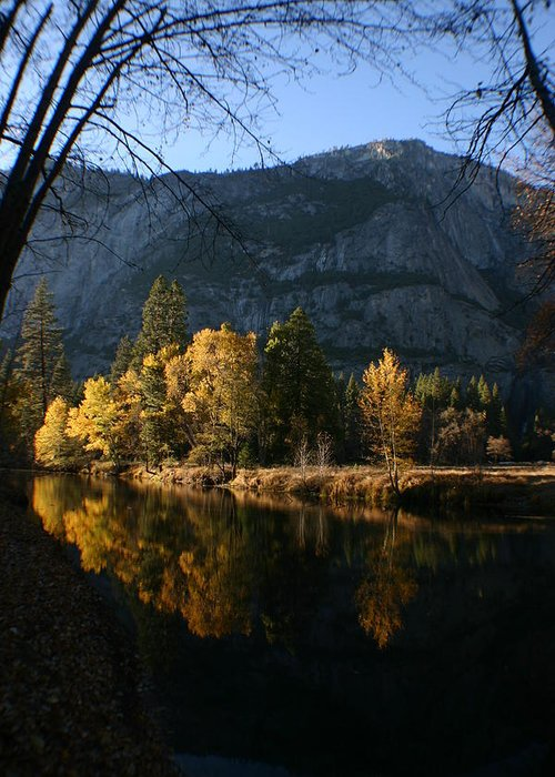 Yosemite Greeting Card featuring the photograph Reflections by Travis Day