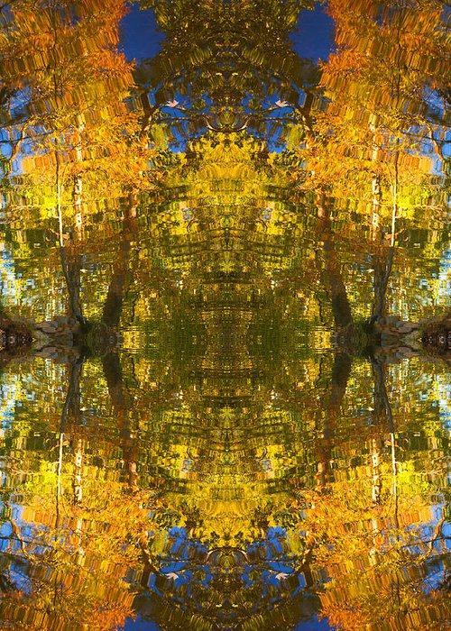 Abstract Greeting Card featuring the photograph Reflections Trees And Water by Bob Coates
