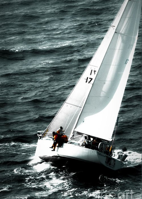 Sailing Greeting Card featuring the photograph Regatta Sailboat Races by Sandy Buckley