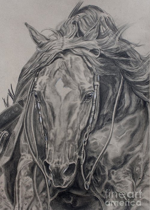 Reiner Greeting Card featuring the drawing Reiner by Jana Goode