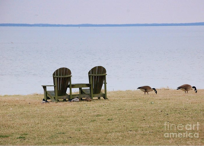 Chairs Greeting Card featuring the photograph Relax by Debbi Granruth
