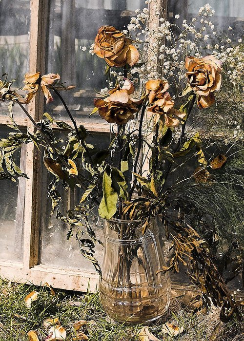 Windows Greeting Card featuring the photograph Remnants Of The Past by Linda McRae