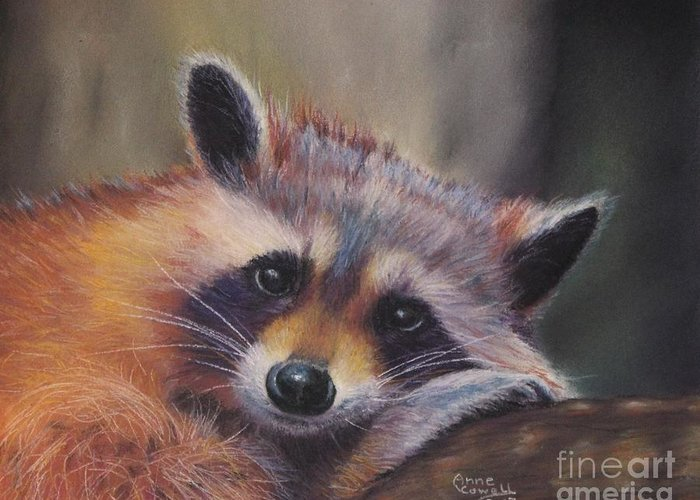 Colorful Raccoon Greeting Card featuring the pastel Resting Raccoon by Anne Cowell