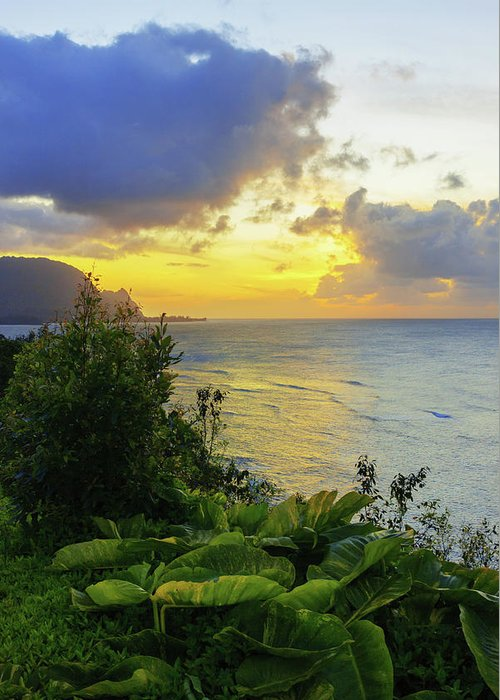 Beach Greeting Card featuring the photograph Return by Chad Dutson